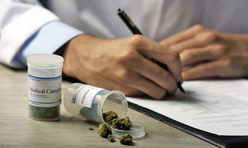 Pushing Cannabis into Modern Healthcare