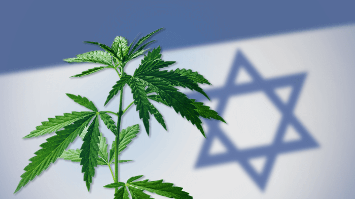 Israeli Medical Cannabis Innovation