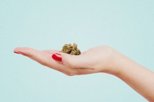 Women's Health and Cannabis