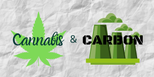 The Carbon Footprint of Legal Cannabis